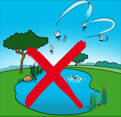 Avoid stagnant water. Stagnant water creates room for the breeding of mosquitoes.